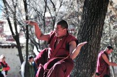 дебатировать монахов Тибета Стоковые Фотографии RF