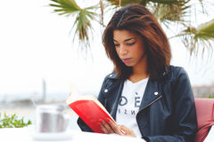 坐在咖啡店大阳台沉思读书有趣的书的年轻可爱的妇女 免版税图库摄影