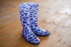 Λαστιχένιες μπότες Στοκ Εικόνες