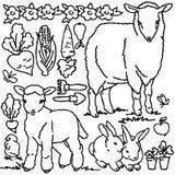 Χρωματίζοντας βιβλίο, ζώα αγροκτημάτων κινούμενων σχεδίων Στοκ Εικόνες