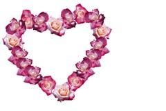 花玫瑰心脏补缀品,隔绝在白色 免版税库存图片