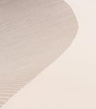 Σύσταση των αμμόλοφων άμμου Στοκ Εικόνες