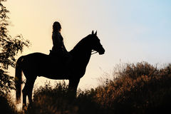 Силуэт девушки ехать лошадь на заходе солнца Стоковое фото RF