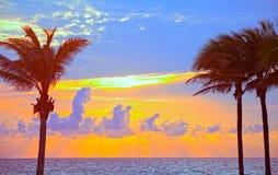 Μαϊάμι Μπιτς, ζωηρόχρωμο θερινή ανατολή της Φλώριδας ή ηλιοβασίλεμα με τους φοίνικες Στοκ Φωτογραφίες