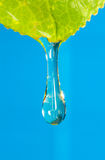вода в реальном маштабе времени Стоковое фото RF
