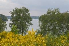 湖在夏天 免版税库存图片