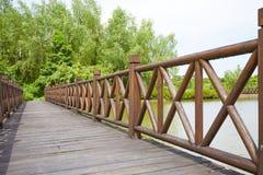 наведите деревянное Стоковое фото RF