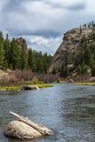 跑通过十一英里峡谷科罗拉多的小河 免版税库存图片