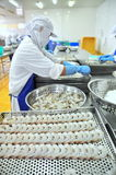 Работники переставляют, который слезли креветку на поднос для установки в замороженную машину в фабрике морепродуктов в перепаде  Стоковое фото RF