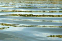 湖 免版税库存图片