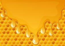 ρέοντας μέλι Στοκ Εικόνες