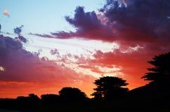 Залив Аполлона, Виктория, Австралия Стоковые Фотографии RF