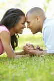 浪漫年轻非裔美国人的夫妇画象在公园 库存照片