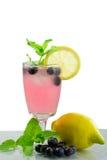 夏天党饮料冷的新鲜的蓝莓柠檬水 免版税库存照片