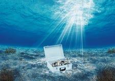 деньги в открытом море Стоковые Фотографии RF
