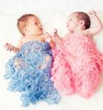 新出生的孪生 库存图片