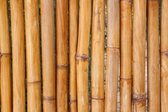 竹篱芭背景,竹墙壁纹理,抽象自然 免版税图库摄影