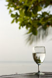 杯在一张黑暗的桌上的纯净的水在与一棵棕榈树的海滩在背景中 图库摄影
