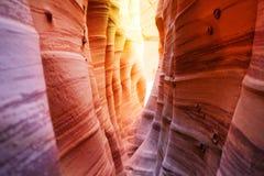 专栏和波浪,斑马槽孔峡谷犹他,美国 免版税库存图片