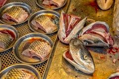 鱼市在中国 免版税库存照片