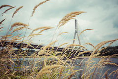 Современный мост в Варшаве над Рекой Висла, Польшей Стоковые Изображения RF