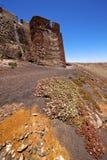 开花阿雷西费兰萨罗特岛西班牙老墙壁城堡哨兵 库存照片