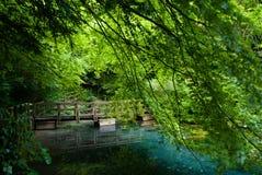 静音的池 免版税图库摄影