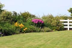 庭院多年生植物 免版税库存照片