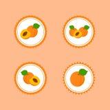 Стикеры дизайна с зрелым вкусным абрикосом Стоковые Фотографии RF