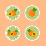 Стикеры дизайна с зрелым вкусным абрикосом Стоковое Изображение RF