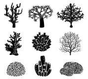 Διανυσματικό σύνολο μαύρων σκιαγραφιών κοραλλιών Στοκ εικόνες με δικαίωμα ελεύθερης χρήσης