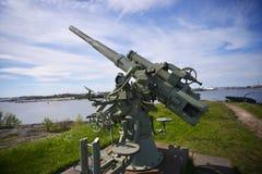 武器在蓝色剧烈的天空下,北欧 库存照片