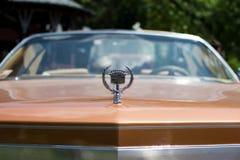 在每年老朋友车展的老卡迪拉克黄金国 库存照片