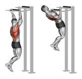 执行 在背部肌肉的反向夹子引体向上 免版税库存照片