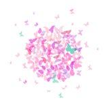 夏天圆的横幅,卡片设计,在白色背景的五颜六色的桃红色蝴蝶 向量 免版税库存图片