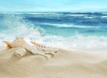 热带海滩和飞溅波浪 库存图片