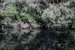 Зеркало призрака Стоковое Фото