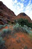 снежок Юта каньона Стоковое Фото