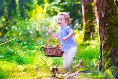 小女孩采摘蘑菇在秋天公园 库存图片