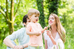 与儿子的家庭草甸吹的蒲公英种子的 库存图片