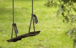 在绳索的空的木摇摆 库存图片
