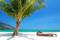 在白色沙子、蓝天和绿松石海的海滩睡椅附近的椰子树 免版税库存照片