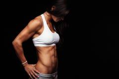 与完善的躯干的适合的女性模型 库存照片