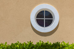 在纹理墙壁上的圈子白色窗口 小阴影和绿色叶子 免版税图库摄影