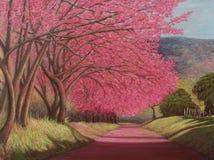 桃红色开花树,原始的油画 免版税库存图片
