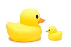 黄色橡胶鸭子玩具在孤立白色背景中 免版税库存图片