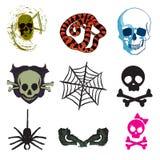 蜘蛛和蛇和头骨哎呀 免版税库存图片