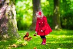 Μικρό κορίτσι που ταΐζει έναν σκίουρο στο πάρκο φθινοπώρου Στοκ Φωτογραφία