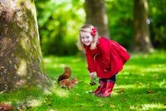 喂养一只灰鼠的小女孩在秋天公园 免版税库存照片
