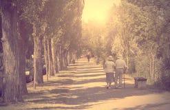 走在公园的老夫妇葡萄酒照片  库存图片
